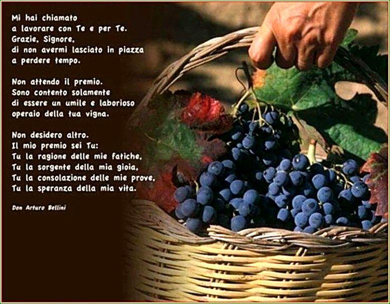 Santa Messa 20-9-20